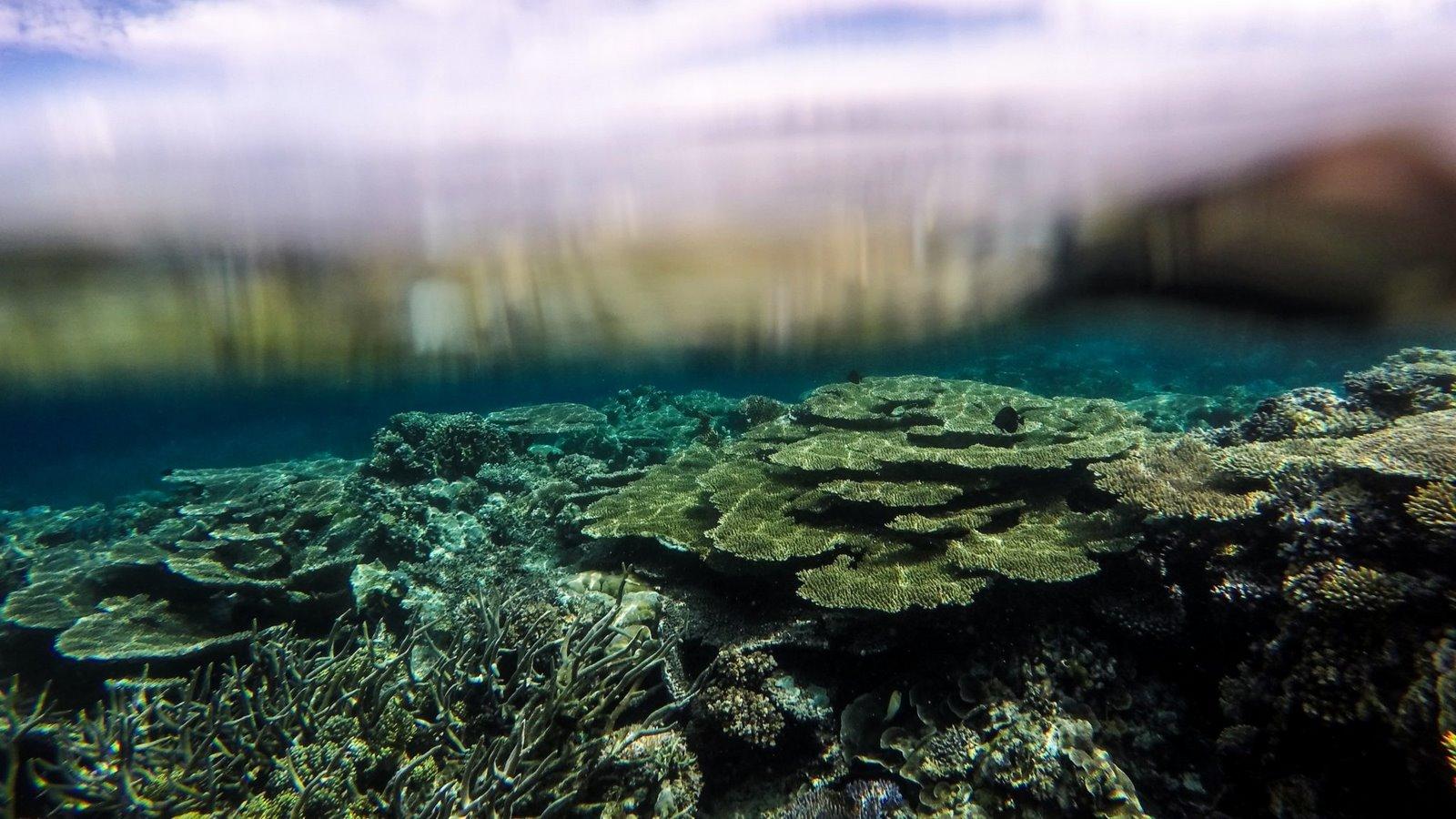 egzotyczne wakacje wycieczki personalne wczasy Indonezja Bali