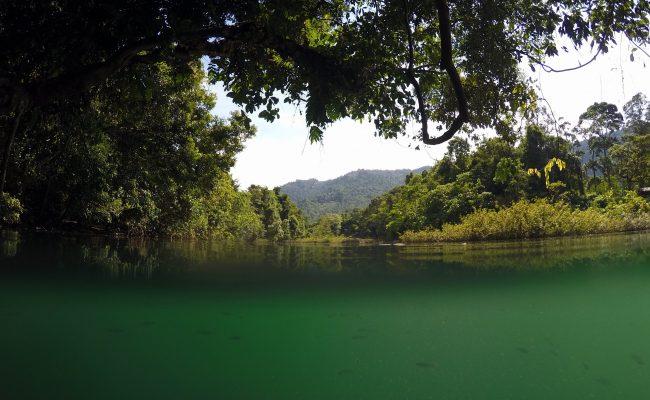 River life, Sumatera