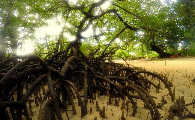 egzotyczne wakacje wycieczki personalne Indonezja Bali wakacje-personalne.pl w2