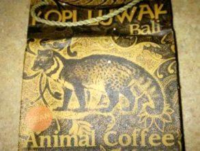 Najdroższa kawa na świecie