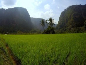 Harau Valley cud natury numer 7